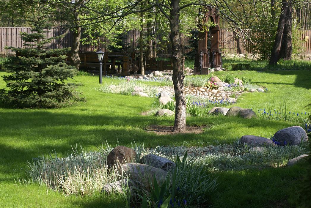 устройство газона при озеленении территории